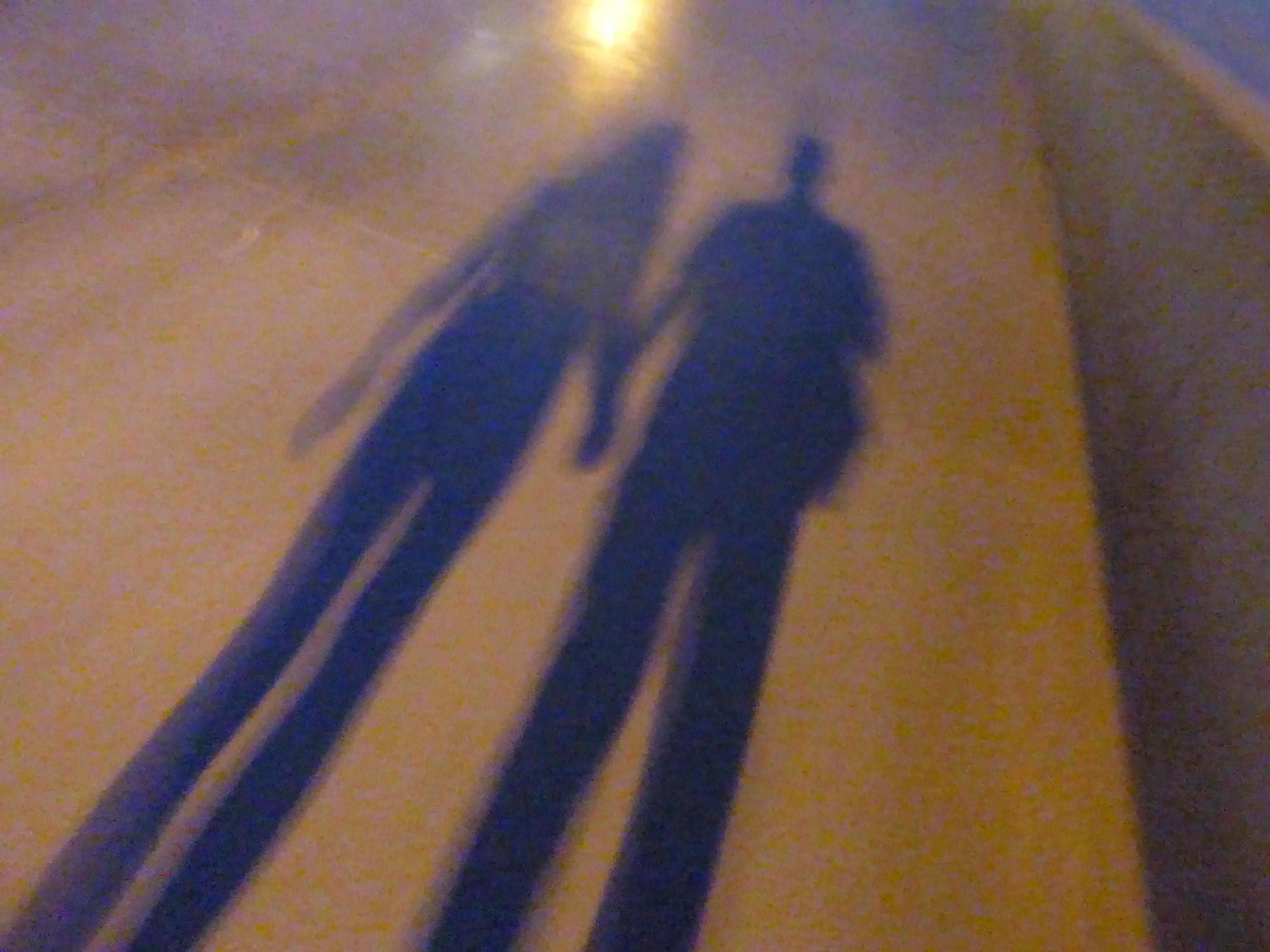 Quella strana coppia: cos'è, perché nasce e tipologie