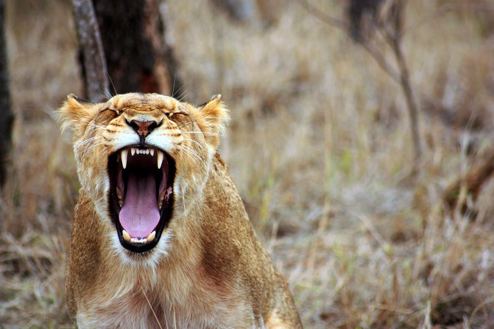 5 Consigli pratici per gestire la rabbia